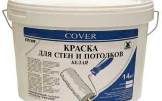 Чем покрасить потолок в ванной комнате: выбор типа и цвета покрытия