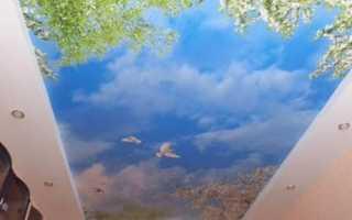 Натяжные потолки с рисунком: выбор цветной росписи и способы ее нанесения