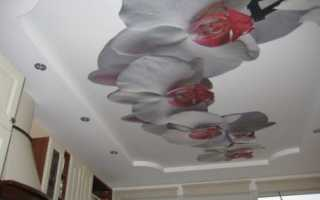 Натяжные потолки с фотопечатью: стильный элемент эффектного интерьера