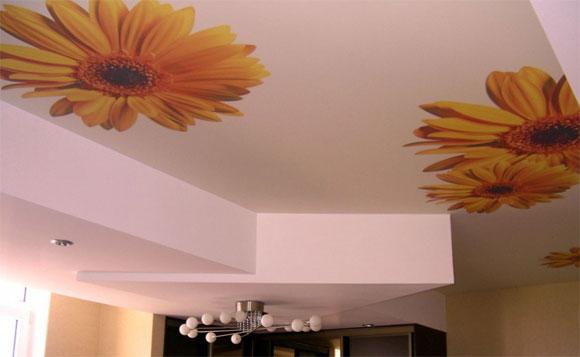 пробковые обои на потолок