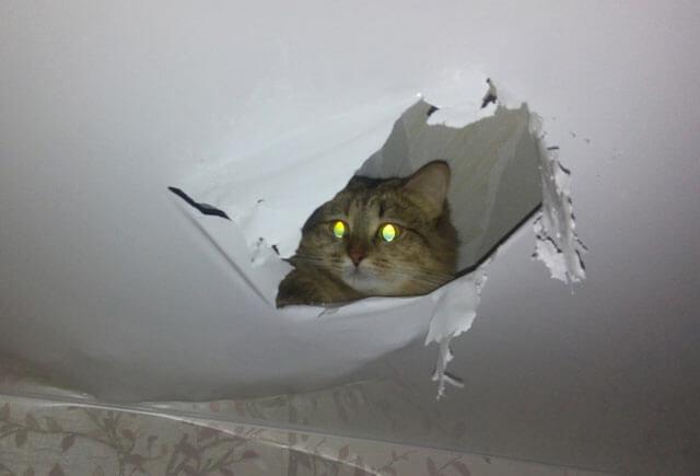 дыра в натяжном потолке