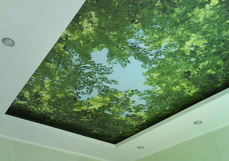 Комната с натяжным 3d потолком
