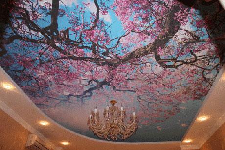 Натяжной потолок с 3d изображением