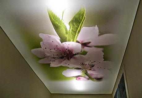 Натяжной художественный потолок с подсветкой