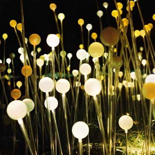 Цветы из светильников