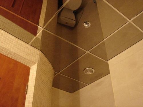 Зеркальный потолок в туалете