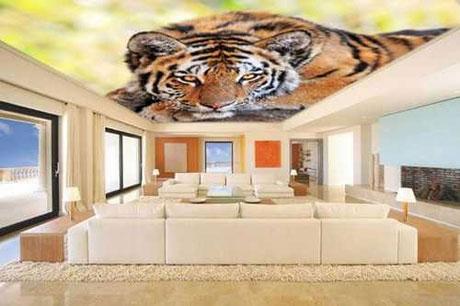 Изображение в формате 3D на потолке